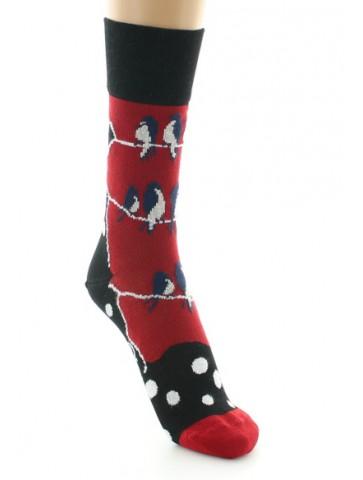 Chaussettes femme Les pies